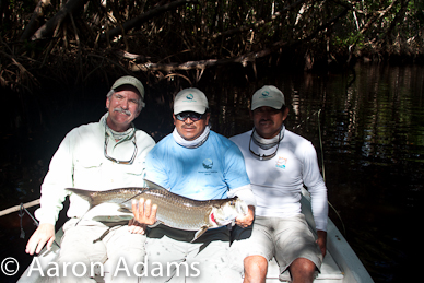 anglers with tarpon